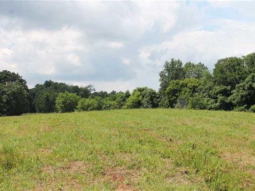 Jost Tract 1 : Breeding : Adair County : Kentucky