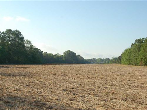140 Beautiful Acres in Eufaula : Eufaula : Barbour County : Alabama