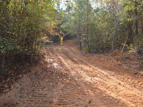 Perfect 168 Acres Hunting Tract : Eufaula : Barbour County : Alabama