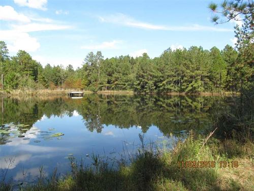 160 Acres of Timber And Recreation : Columbia : Marion County : Mississippi