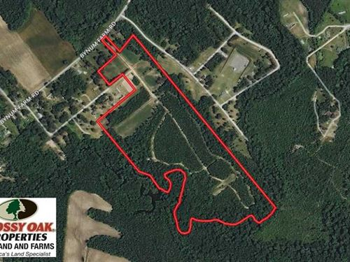 Under Contract, 49 Acres of Hunti : Pinetops : Edgecombe County : North Carolina