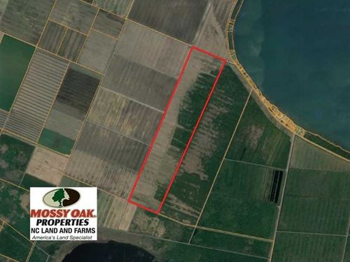 703 Acres of Farm And Hunting Land : Creswell : Washington County : North Carolina