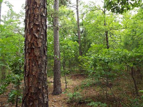 Remote, Hunter's Recreational : Heavener : Le Flore County : Oklahoma
