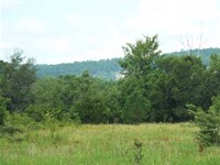 Daisy Hunting, Small Town Big Buck : Daisy : Atoka County : Oklahoma