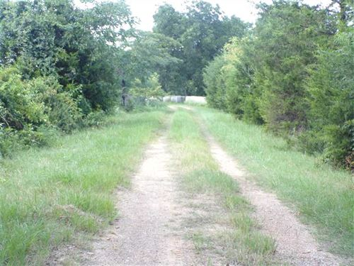 Prime Cattle Pasture Off Fallon Ch : Hugo : Choctaw County : Oklahoma