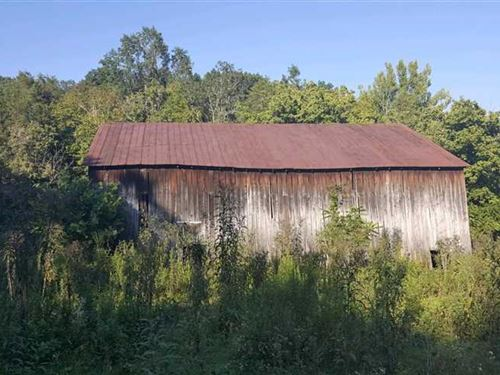 Bear Creek Rd - 8 Acres - Clermont : Felicity : Clermont County : Ohio