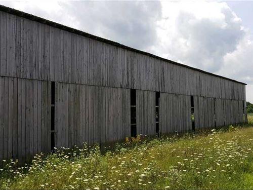 J. Bolender Rd - 205 Acres - Brown : Felicity : Brown County : Ohio