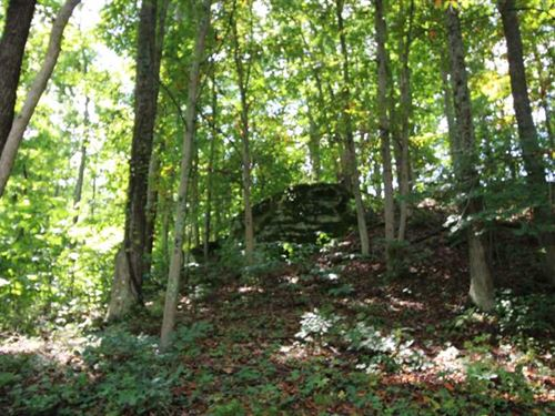 Sargent Rd - 58 Acres - Athens Cou : Guysville : Athens County : Ohio