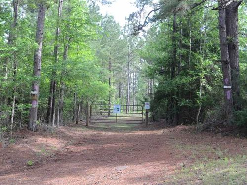 39.2 Acres With Timber, Wildlife : Mount Enterprise : Rusk County : Texas