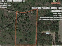 4 Acres Near West Green GA in : West Green : Coffee County : Georgia