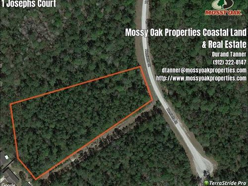 2.5 Acres For Sale Near Kingsla : Kingsland : Camden County : Georgia