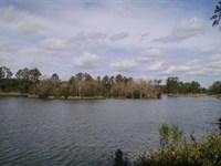 2.5 Acres of Land on Lake in Charl : Folkston : Charlton County : Georgia
