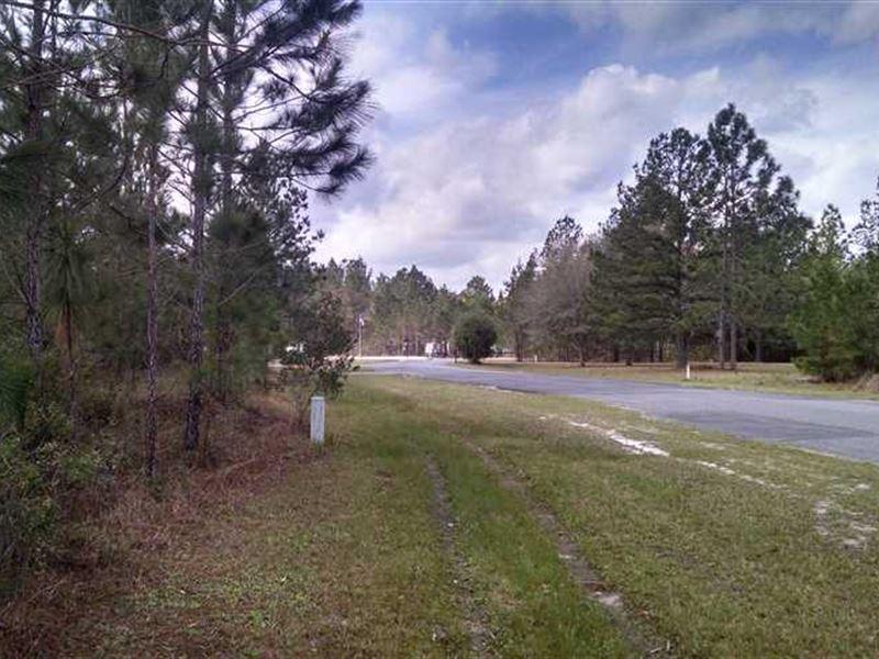 1 Acre Lot in Charlton County : Folkston : Charlton County : Georgia
