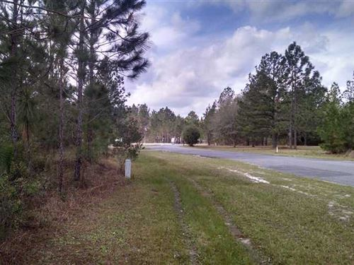 1 Acre Lot in Charlton County : Folkston : Charlton County : Georgia