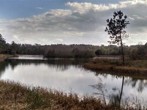 3+ Acres Lakefront Land in Charlto : Folkston : Charlton County : Georgia