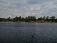 2+ Acres of Lakefront in Charlton : Folkston : Charlton County : Georgia