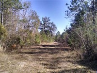 93 Acres of Land in Camden County : White Oak : Camden County : Georgia