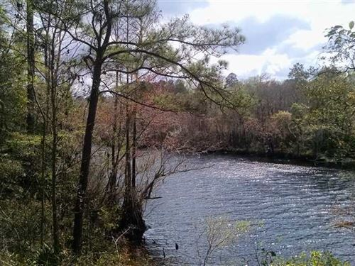 8 Acres Riverfront Land in Charlto : Folkston : Charlton County : Georgia