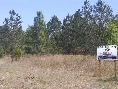 26 Acres In Pierce County GA Blackshear Georgia