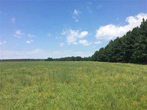 Price Drop- Farmland For Sale, Ri : Beebe : White County : Arkansas