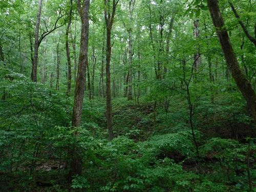26 Acres And Cabin/Home Adjoining : Hector : Pope County : Arkansas