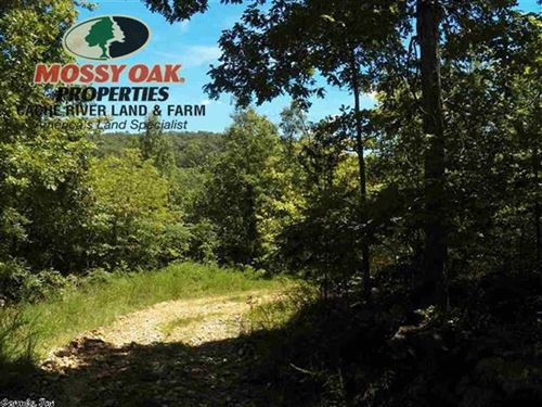21.35 Acres With Raccoon Creek Fro : Mountain View : Stone County : Arkansas