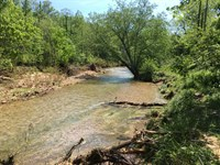 965 Acres Hunting Land With Year : Saint Joe : Marion County : Arkansas