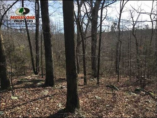 80 Acres of Great Hunting Near Con : Concord : Cleburne County : Arkansas