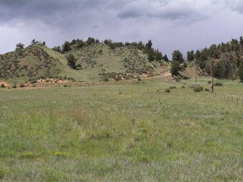 Eagle's Nest Ranch : Hartsel : Park County : Colorado