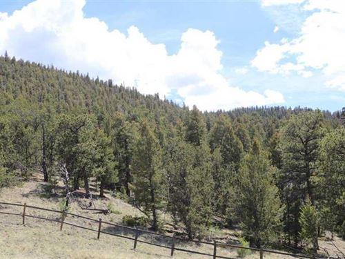Sunset Retreat : Hartsel : Park County : Colorado