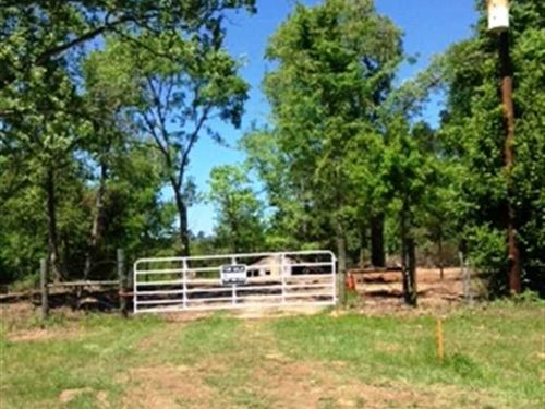 50.5 Acre Homesite With a Beautifu : Henderson : Rusk County : Texas