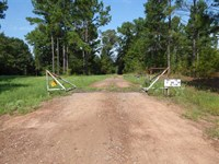 Very Affordable 24.71 Acres, Hunti : Henderson : Rusk County : Texas