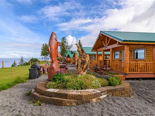 Soar With The Eagles at This Alask : Clam Gulch : Kenai Peninsula Borough : Alaska