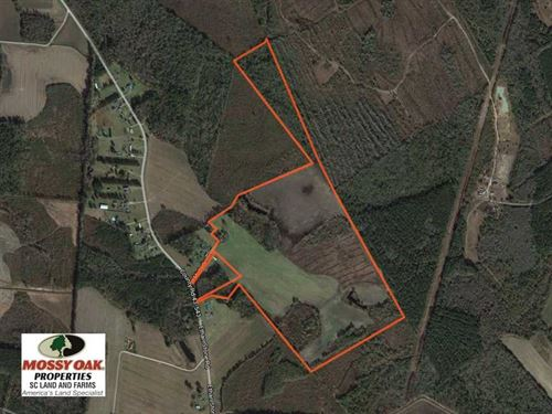 110 Acres of Farm Land For Sale in : Paxville : Clarendon County : South Carolina