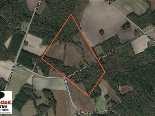 Price Reduced, 62.2 Acres of Hunti : Kingstree : Williamsburg County : South Carolina