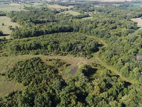 Secluded Hunting 59 Acres in Da : Kidder : Daviess County : Missouri