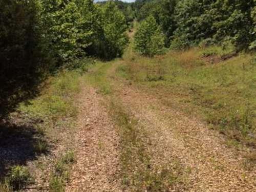 Price Reduced, Great Hunting pr : Waynesville : Pulaski County : Missouri