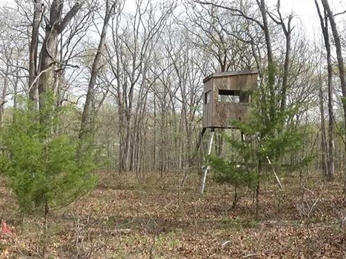 207 Acres of Timber Land With Buil : Camdenton : Camden County : Missouri