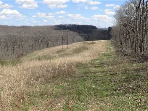160 Acres Great Hunting Tract Old : Stover : Morgan County : Missouri