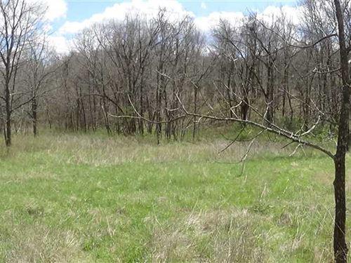 7 Acres. Great Build Site Close : Gravois Mills : Morgan County : Missouri
