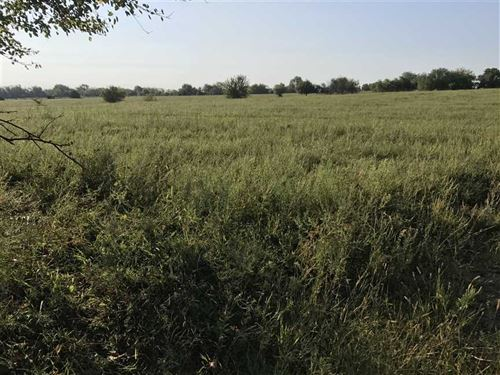 Ranch/Farm Land : Green Ridge : Pettis County : Missouri