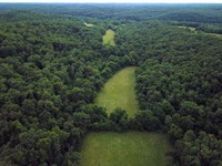 Reduced, 318 Acres of Some of The : Stover : Morgan County : Missouri