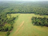 583.5 Acres Great Combination Farm : Stover : Morgan County : Missouri