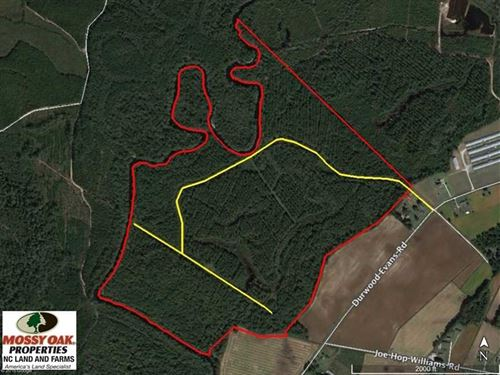 Under Contract, 212 Acre Riverfro : Beulaville : Duplin County : North Carolina