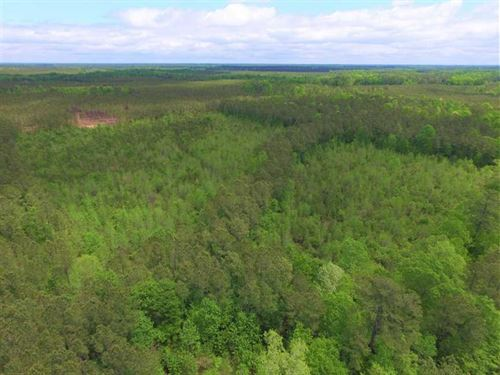 Under Contract, 45 Acres of Hunti : Harrellsville : Hertford County : North Carolina