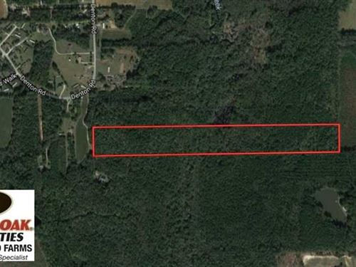 24.5 Acres of Hunting And Timber : Middlesex : Nash County : North Carolina