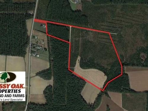 57.3 Acres of Timber And Farm Land : Lucama : Wilson County : North Carolina