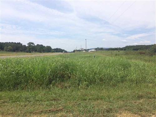 4 Beautiful Acres on Hwy 411 : Leesburg : Cherokee County : Alabama