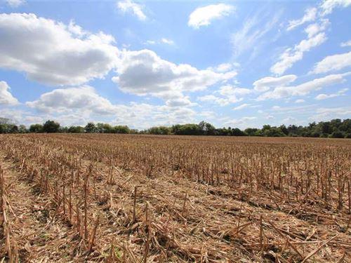 20+ Acres in Rowan County : Mount Ulla : Rowan County : North Carolina