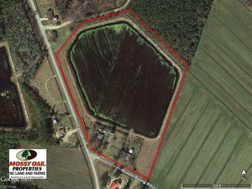 Reduced, 16 Acre Duck Impoundment : Lowland : Pamlico County : North Carolina